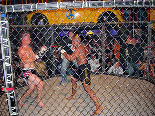 marcus brimage mma fight cage