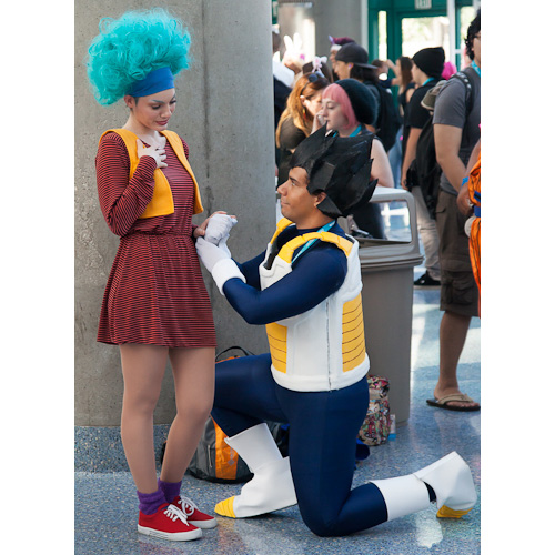 Vegeta and bulma costume
