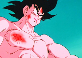 goku endures suffering dbz