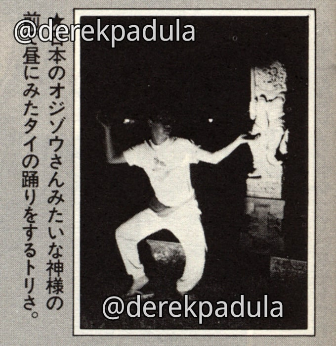 akira toriyama dancing in bali bird land press 19